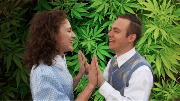 A definite high for REEFER MADNESS